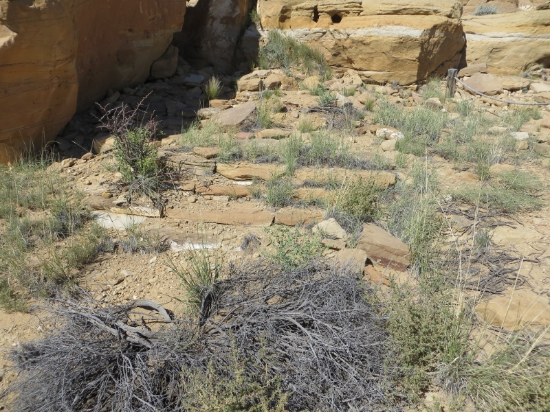 Wandering To An Ancient Stairway At Chaco Canyon Gentle