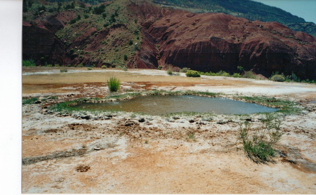 This is one of the active springs. Look carefully and you can see how the water is almost alive.