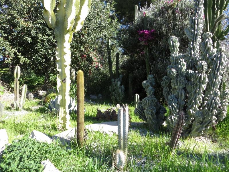 This garden was spectacular.