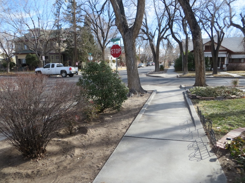 This would be a very nice street for walking. The sidewalks are separated from the street, there is nice shade, and the houses are interesting.