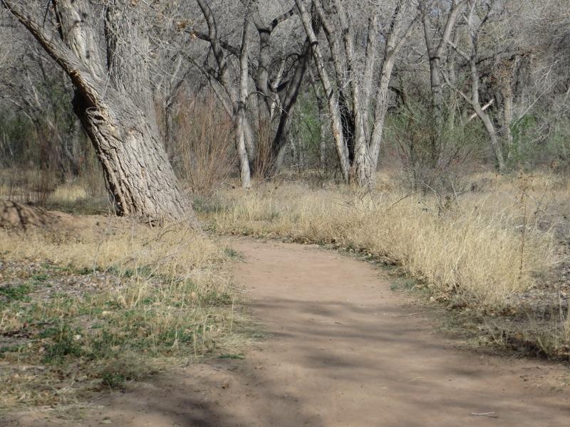 I like to follow the walking paths.