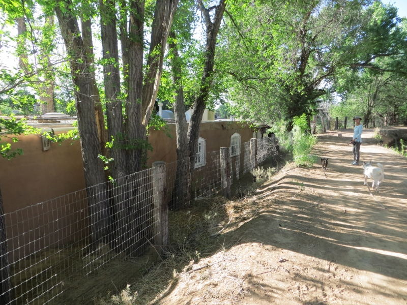 Walking along the acequia gives you achance to see all types of homes including this very large and very old adobe home.