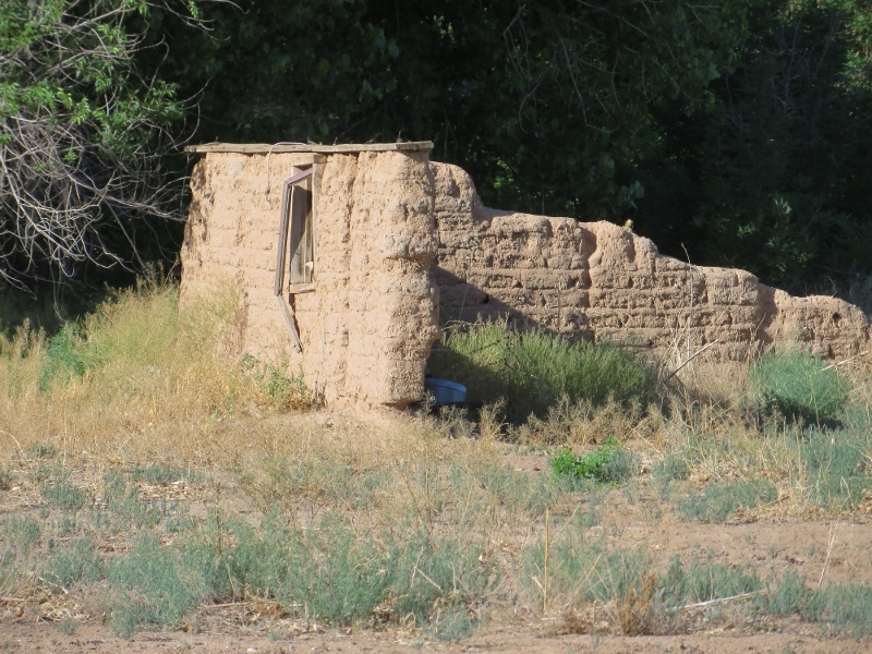 We even passed a field with a melting adobe home.