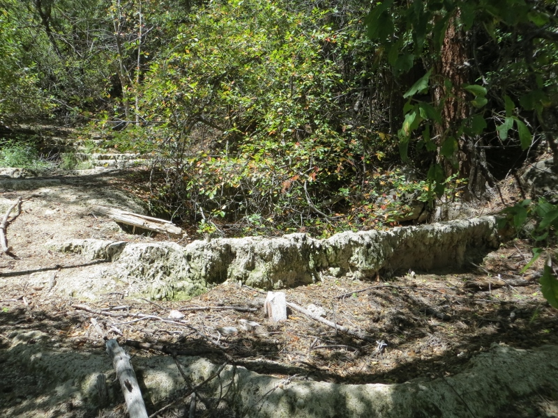 If you look upstream through the trees, you can see several stair steps of dried pools.