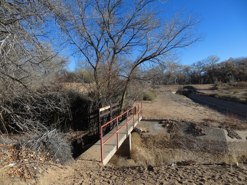 This footbridge and path took us into the bosque.