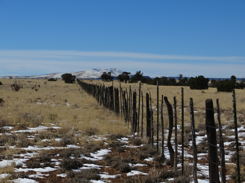 But we were keeping it simple by following the fence line.