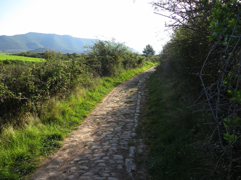 This is an actual Roman road!