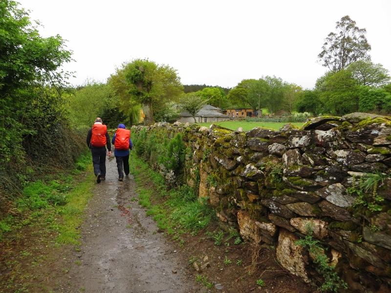 The Camino in Galicia.