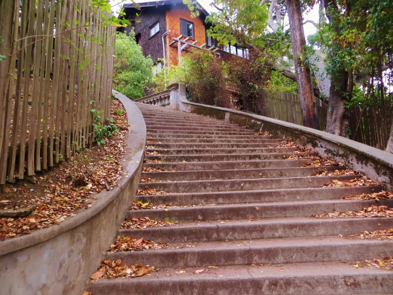 We began climbing up Panoramic Hill on the Orchard Lane steps a long field goal away from the Cal football stadium.