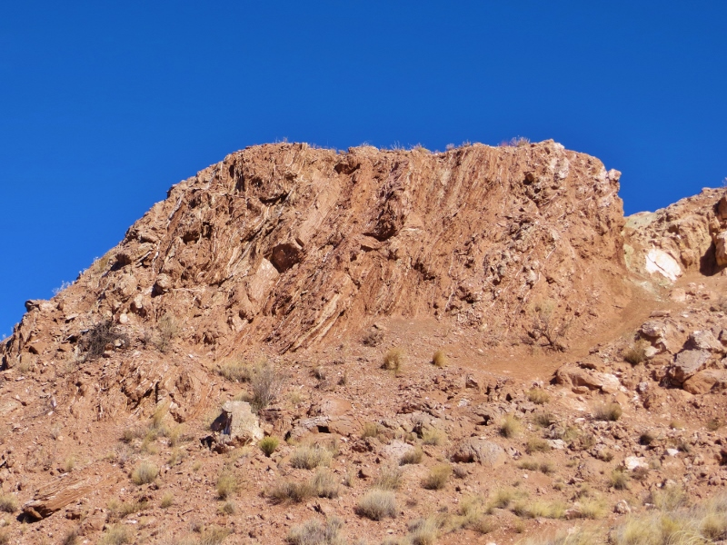 If you look closely at this picture, you can see small layers of white gypsum in this almost vertical layer of red rock