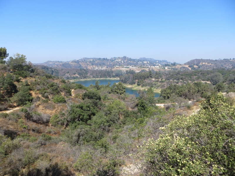 Here's the Hollywood reservoir down below. With the persistent drought, the water level is quite low.