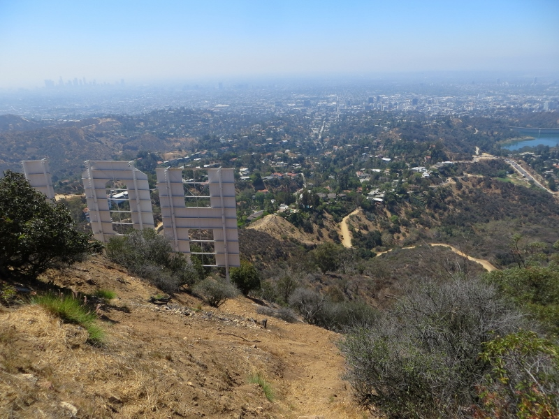 If you don't spend too much time checking out everything along the way, you'll soon be on top and look down on the Hollywood sign.