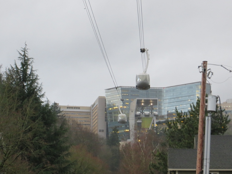 While walking across the bridge, you have the added attraction of the tram gondolas flying overhead.