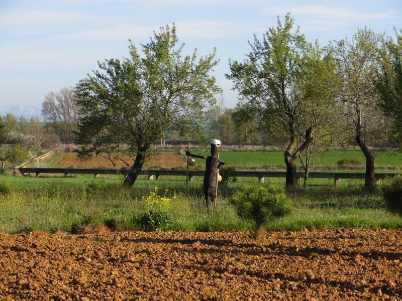 And finally an example from overseas. Here's a statue of a perigrino (pilgrim) along the Camino de Santiago in Spain.